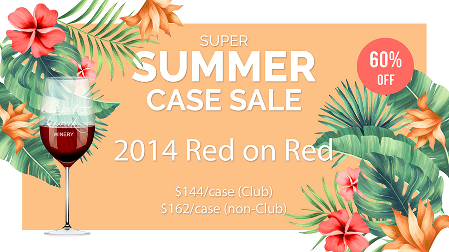 Summer Case Sale!